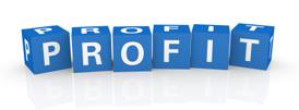 Creating Revenue Streams with Custom WordPress Plugins